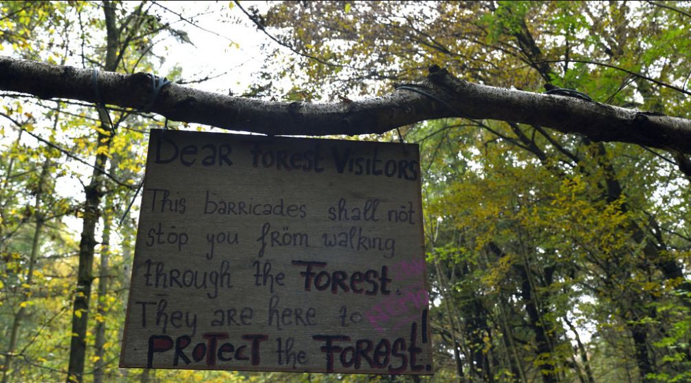 Dear Forest Visitors