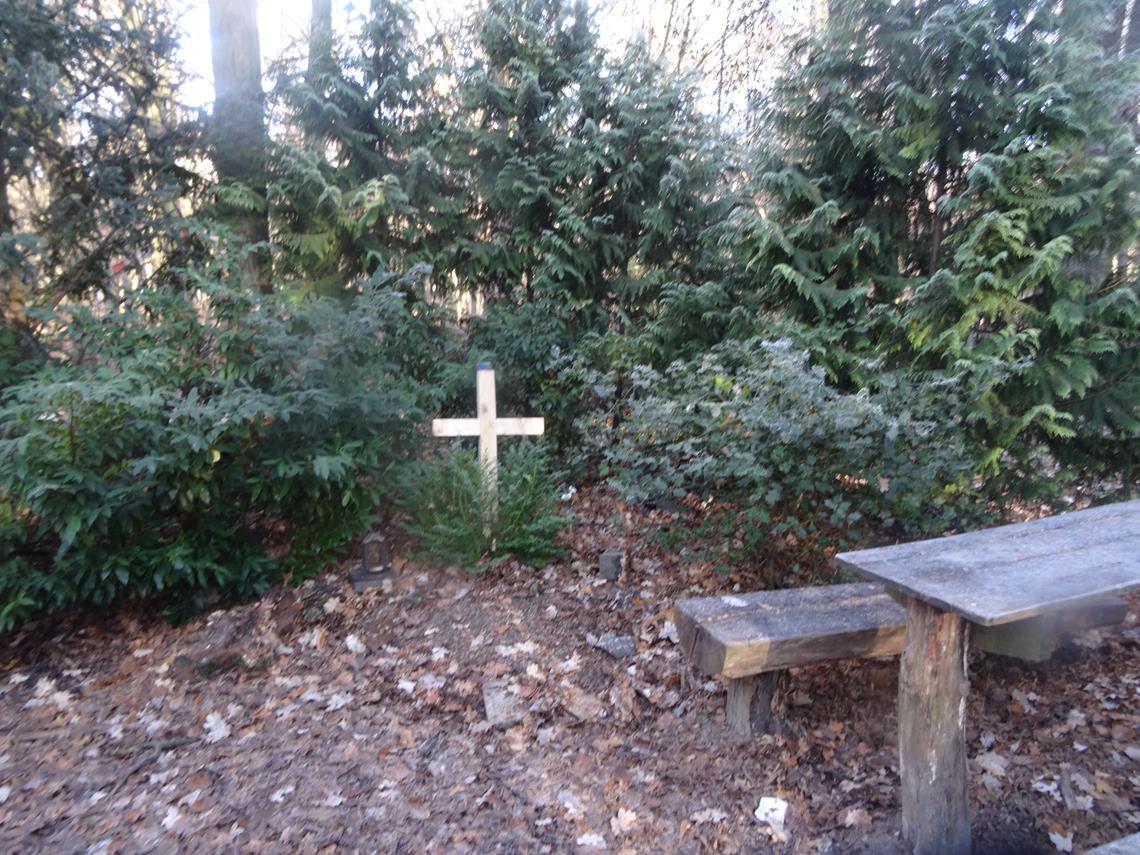Thymian's Cross