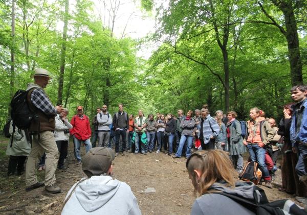 http://hambacherforst.blogsport.de/images/Waldspaziergang1.jpg